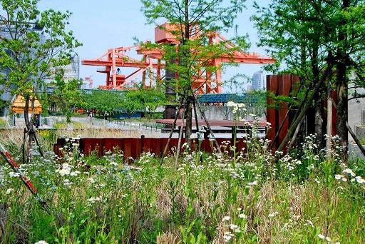 """从""""公园""""到""""公园化"""" 杨浦滨江将建15.6平方公里""""全球友好会客厅"""""""